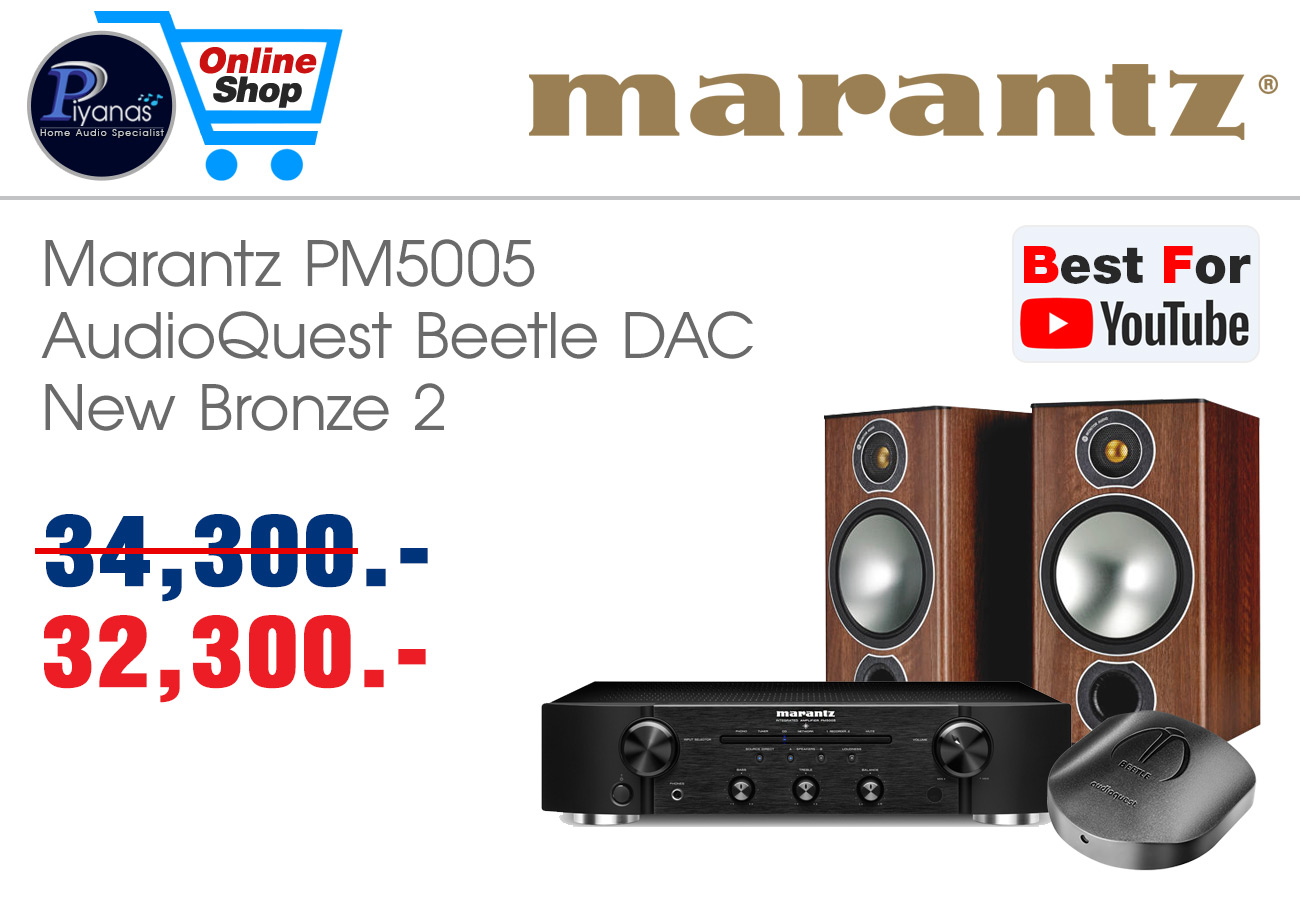 PM5005 + beetle + New Bronze 2